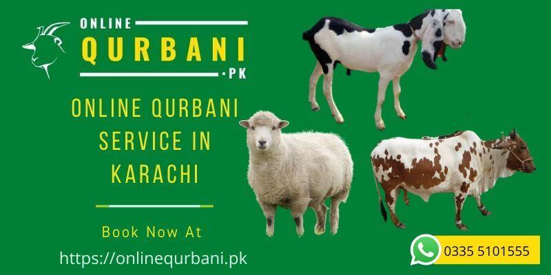 Online Qurbani Service In Karachi Pakistan